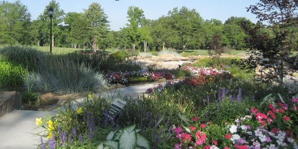 Legacy Park view of paths and flowers in bloom