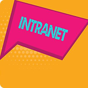 Intranet Graphic